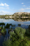 Réflexion de lac mountain Image libre de droits