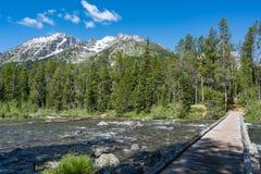 Réflexion de lac park national de Teton Photos stock