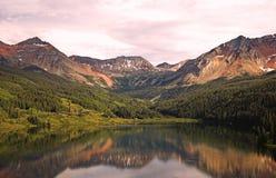 Réflexion de lac trout Images stock
