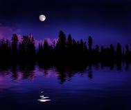 Réflexion de lever de la lune de forêt Photos stock