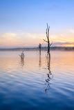 Réflexion de lever de soleil au lac Samsonvale Photographie stock libre de droits