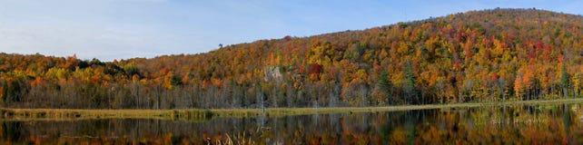 Réflexion de matin sur le lac Image libre de droits