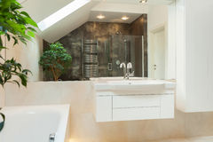 Réflexion de miroir de salle de bains moderne spacieuse Photographie stock libre de droits