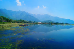 Réflexion de montagne, Dal Lake, Srinagar images libres de droits