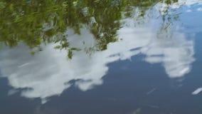 Réflexion de nuage dans l'eau banque de vidéos