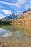 Réflexion de paysage d'automne de lac string photos stock