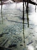 Réflexion de piscine de Yellowstone Image stock