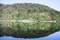 Réflexion de rivage de lacs Plitvice images libres de droits