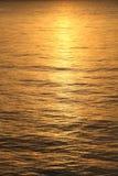Réflexion de Sun Photo libre de droits