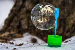 Réflexion des arbres dans la bulle de savon dans le ventilateur en plastique Images libres de droits