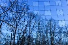Réflexion des arbres dans un mur de verre Images stock