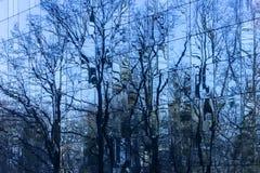 Réflexion des arbres dans un mur de verre Photos stock