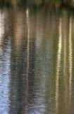 Réflexion des arbres et du ciel dans l'eau Photographie stock
