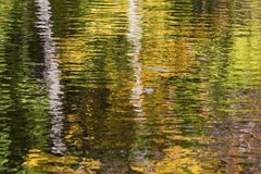 Réflexion des arbres sur une rivière d'automne photographie stock