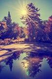 Réflexion des faisceaux de Sun derrière les arbres photographie stock libre de droits