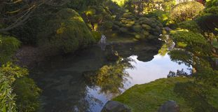 Réflexion des jardins de thé japonais photo libre de droits