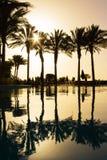 Réflexion des silhouettes des palmiers dans l'eau de piscine Photographie stock libre de droits