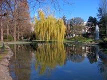 Réflexion en parc de Danube à Novi Sad, Vojvodeina, Serbie photos libres de droits