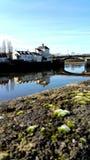 Réflexion en rivière Image stock