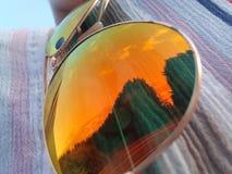 Réflexion et arbres de lunettes de soleil d'été photographie stock libre de droits