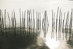 Réflexion et silhouette de barrière en bois sur l'eau photographie stock libre de droits