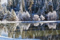 Réflexion III d'hiver Photographie stock
