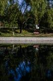 Réflexion inversée dans l'eau Photos libres de droits