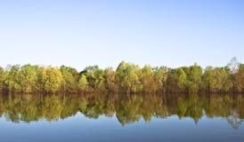 Réflexion parfaite de l'eau Photo stock