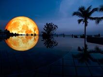 réflexion superbe de lune de plein sang sur la piscine Image stock
