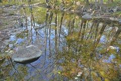 Réflexion sur la rivière 4 Images libres de droits