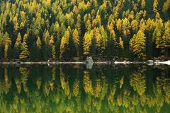 Réflexion sur Lago di Braies, dolomites, Italie Images libres de droits