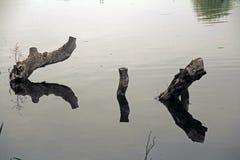 Réflexion triple dans le lac Photographie stock