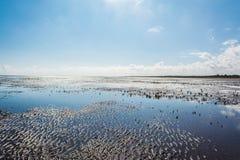 Réflexions à marée basse Photos stock