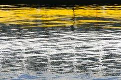 Réflexions Photo libre de droits