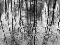 Réflexions Image stock