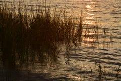 Réflexions Photos stock