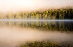 Réflexions brumeuses d'or Photo libre de droits