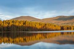 Réflexions calmes sur l'eau avec le paysage photographie stock libre de droits
