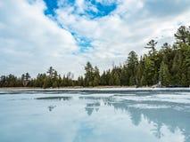 Réflexions 4 Cedar Forest Beside Frozen Marsh de dégel d'hiver Image stock