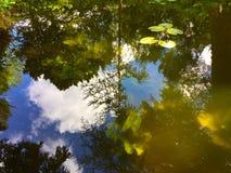 Réflexions colorées de ressort Image stock