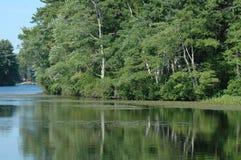 Réflexions d'étang. Photo stock