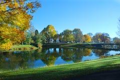 Réflexions d'arbre d'automne Photographie stock