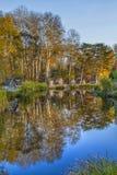 Réflexions d'arbre par le lac Images libres de droits