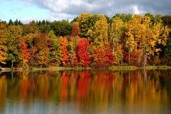 Réflexions d'automne Photographie stock libre de droits