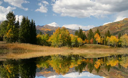 Réflexions d'automne Photo stock