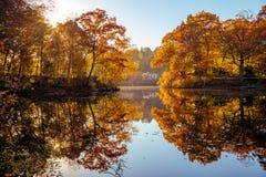 Réflexions d'automne de feuillage dans le lac Photographie stock