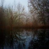 Réflexions d'hiver Photographie stock