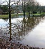 Réflexions d'inondation Images stock