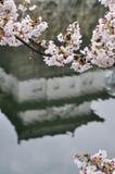 Réflexions d'un château à Osaka Photo libre de droits