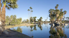 Réflexions dans le lac park d'Encanto, Phoenix, AZ Image stock